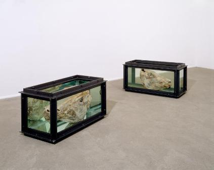 Oeuvre de Damien Hirst